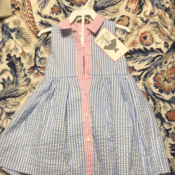 Rare Editions Other - Baby size 24 mo seersucker dress